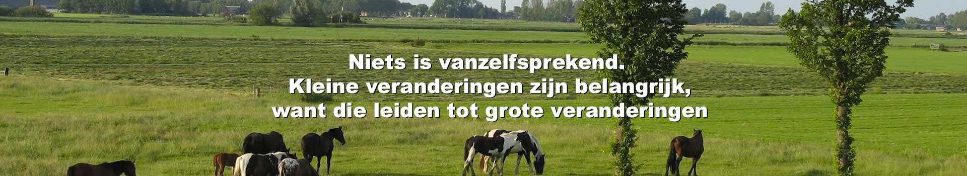 Cooperatief Nederland